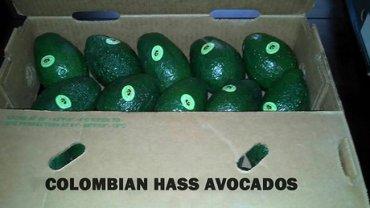Rust in Colombia zorgt voor opkomst avocadotelers